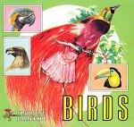 Birds / Vögel - Panini