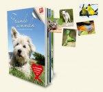Freunde sammeln - Das Sammelalbum für Tierfreunde (Zoo &  Co) - Sonstiges