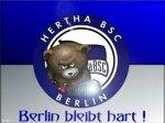 berliner62
